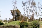 View of the Golf course green in Rancho La Cima Community