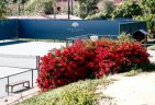 Residents of the private gated community Rancho Valencia enjoy access to Tennis court