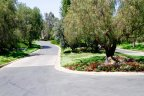 The Brides street with professionally maintained landscape