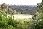 Beautiful view of the Carmel Valley Golf Course.