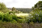 Gorgeous floral views residents of the Carmel Valley get to enjoy.