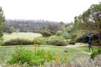 Fair view of the golf course greens and neighboring community in Carmel Valley San Diego California