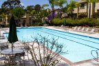 Residents of the Crest at Del Mar Community enjoy access to this clear blue pool few steps from the homes