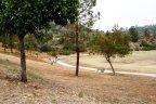 Del Cerro Park Trail