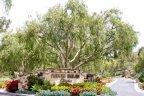 Fairbanks Highlands Estates Entrance in San Diego California