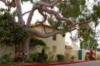 A beautiful two story Spanish style home located in the La Playa Community of San Diego