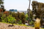 The residents of these homes enjoy panoramic views and clear skylines at Nob Hill Neighborhood