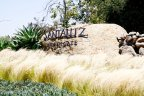 This is Santaluz Community Sign in San Diego California