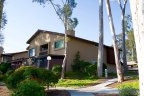 This beautiful hillside home is located in Timberlane Neighborhood in San Diego California