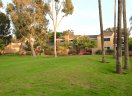 A Green grassy area between Beachwalk homes in Huntington Beach