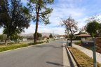 Beautifully maintained streets wind through the beautiful neighborhood of Canyon Crest