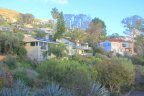 Hillside view of homes in the laguna beach community of Coast Royale