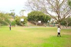 A grassy area where children play at Thunderbird Park