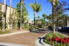 Islands is a beautiful community within Aliso Viejo