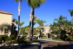 Islands has many impecabbly maintained homes in Aliso Viejo