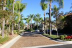 Islands boasts mature landscaping and wide streets