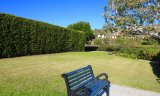 A small grassy area within Monarch Bay Terrace, perfect for children & pets