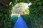 Enjoy miles of walking paths in Paloma Del Sol