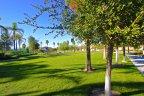 Lots of greenery greets you at Roripaugh Ranch
