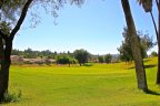 Golf Course in Temeku Hills