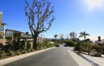 Residential Street and ocean view in Three Arch Bay Laguna Beach
