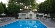 Take a dip in the pool at Twelve Picket Lane in Aliso Viejo Ca